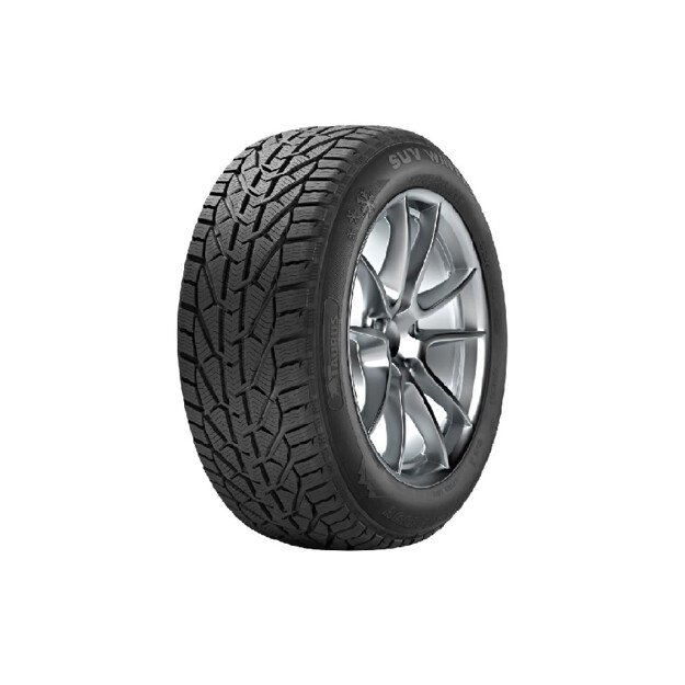 Picture of TAURUS 225/40 R18 WINTER 92V XL